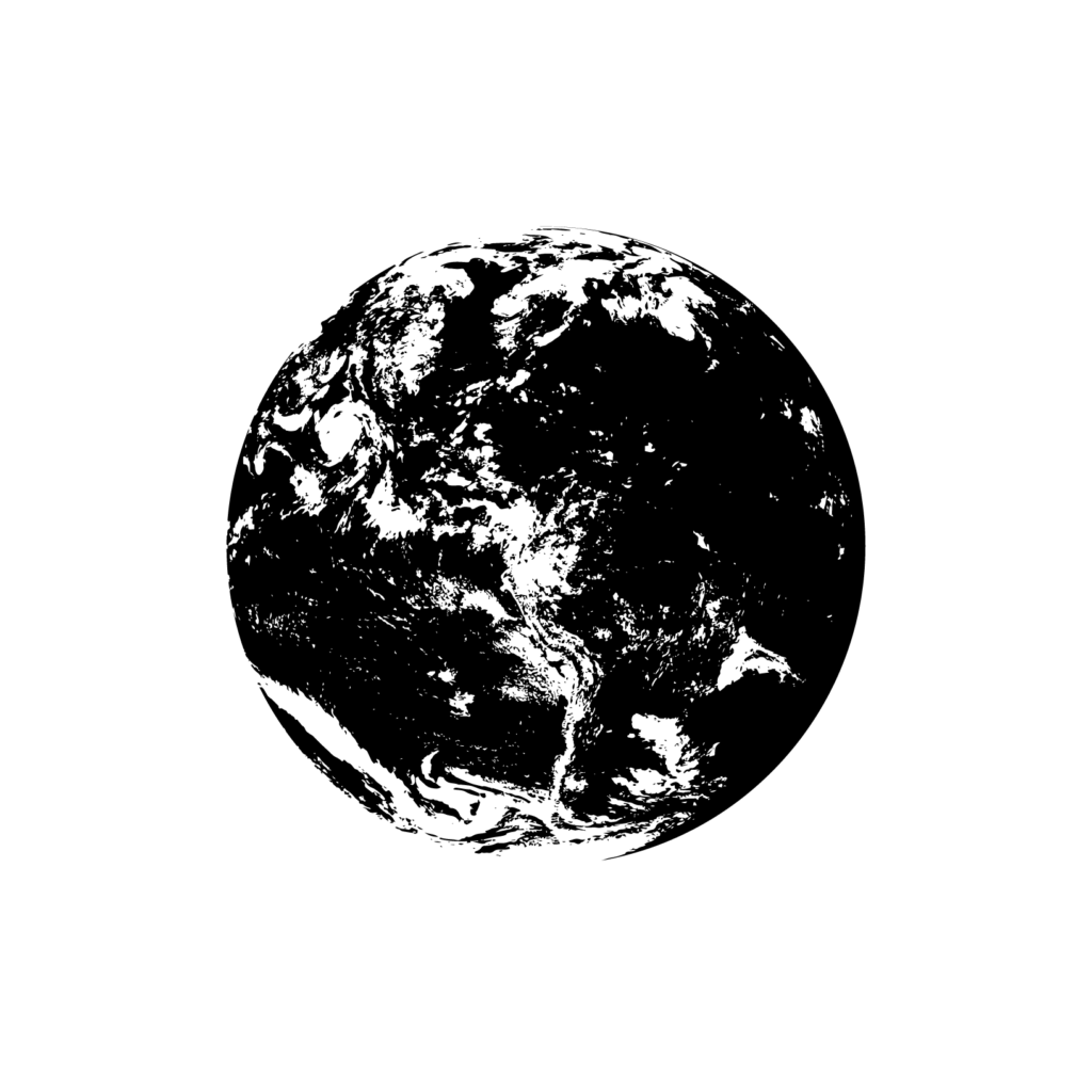 world with torus field