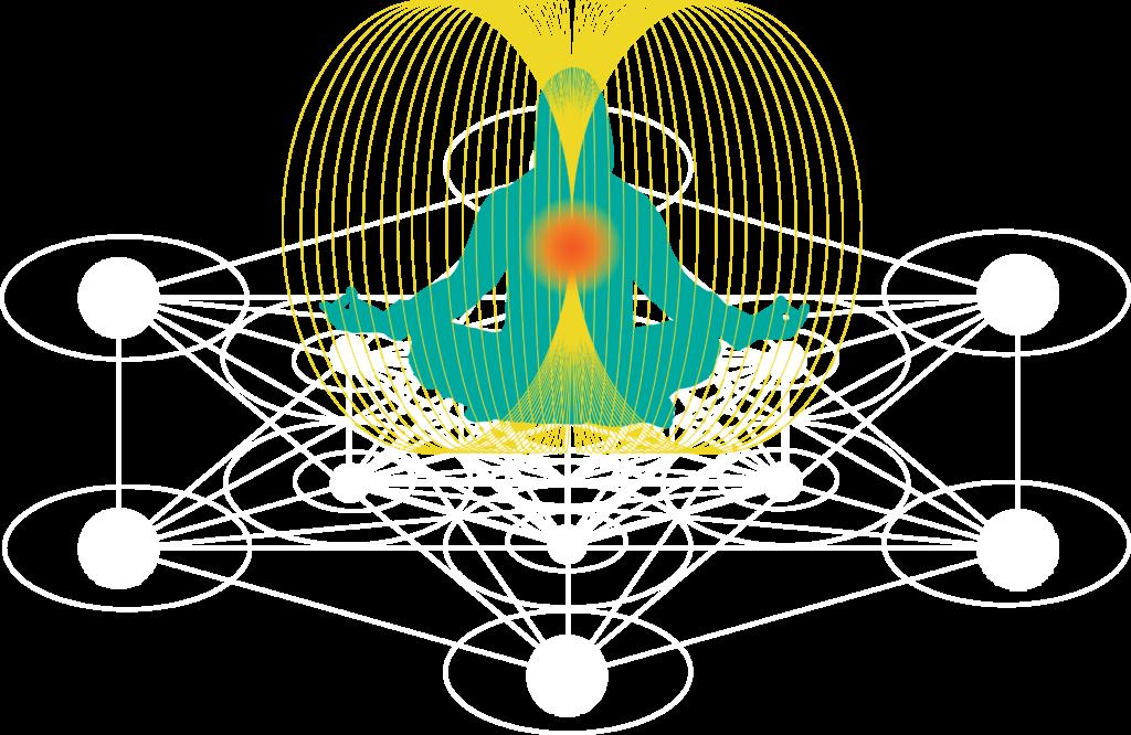 Human Torus energy