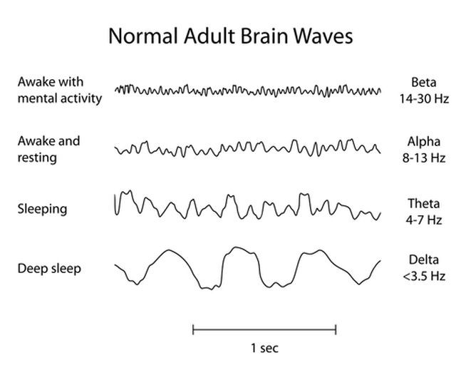 This is How Sound Affects Your Brain - Monatomic Orme
