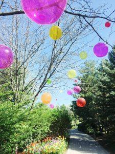 m-state helium